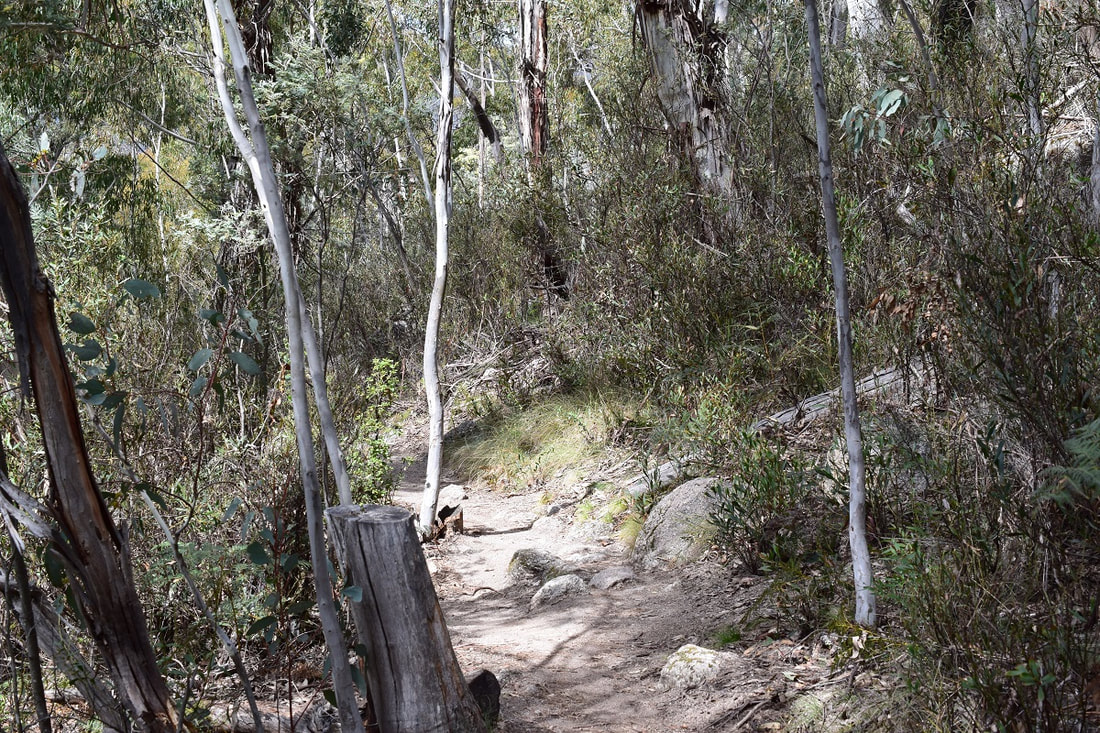 Booroomba Rocks Walking Track